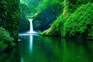 Green Forest Waterfall Desktop Background