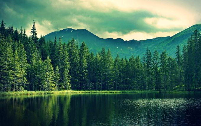 Mountains Summer Lake Trees Forest Desktop Background