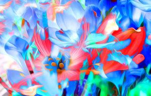 Rendering Flowers Art Lines Bright Desktop Wallpapers