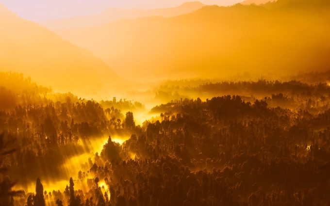 Golden Sunrise Desktop Wallpaper