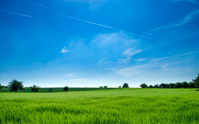 Panoramic Photography of Green Field Background Wallpaper