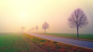 Road in the Middle of Foggy Field Background Wallpaper