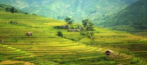 Agriculture Countryside Cropland Farm Desktop Wallpapers