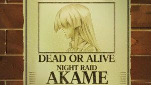 Akame ga Kill! 111 Desktop Background Wallpapers