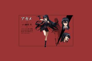 Akame ga Kill! 118 Desktop Background Wallpapers
