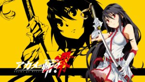 Akame ga Kill! 160 Desktop Wallpapers