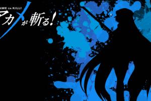 Akame ga Kill! 181 Desktop Wallpapers