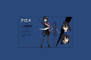 Akame ga Kill! 37 Desktop Background Wallpapers