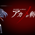 Akame ga Kill! 62 Desktop Background Wallpapers