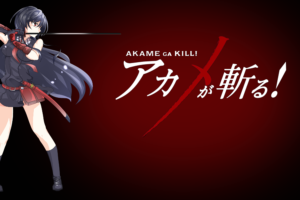 Akame ga Kill! 60 Desktop Background Wallpapers