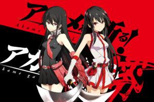 Akame ga Kill! 61 Desktop Background Wallpapers