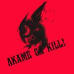 Akame ga Kill! 66 Desktop Background Wallpapers