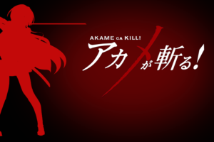 Akame ga Kill! 72 Desktop Background Wallpapers