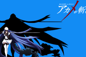 Akame ga Kill! 73 Desktop Background Wallpapers