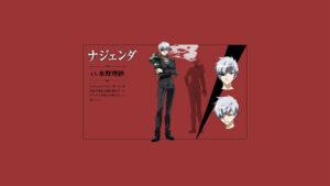 Akame ga Kill! 79 Desktop Background Wallpapers