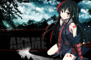 Akame ga Kill! 9 Desktop Background Wallpapers