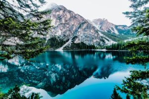 Daylight Forest Glossy Lake Desktop Wallpapers