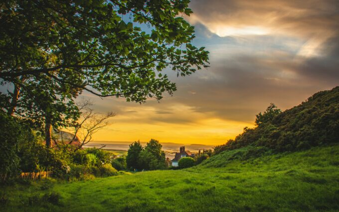 Green Trees Under Blue And Orange Sky During Sunset Desktop Wallpapers