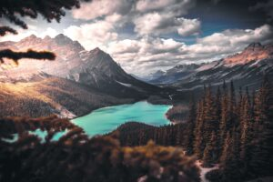 Scenic Photo Of Lake Surrounded By Trees Desktop Wallpapers