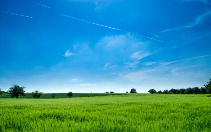 Green Field Desktop Wallpapers