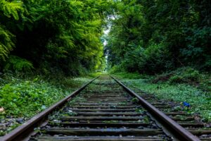 Railway Surround by Trees Desktop Wallpapers